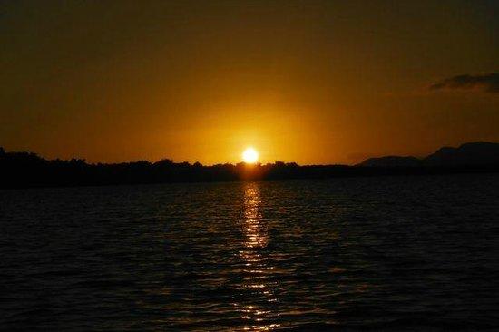 Luminita Kayak Biobay Tours:                   sunset