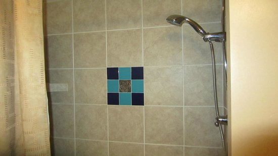Prescott Resort & Conference Center: Tile in Bathtub. If you're sitting in the bathtub you have to standup to turn off or adjust the
