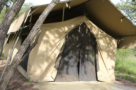 Dunia Camp, Serengeti:                   our tent - was better than it looks ;)