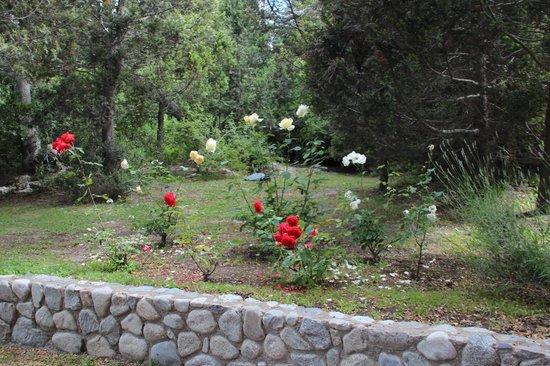 Hosteria Pichi Rincon:                   Parque