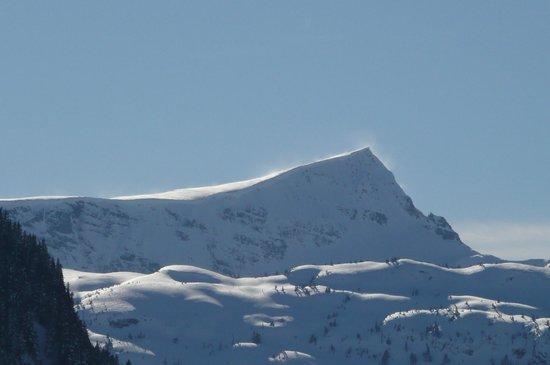 Mount Washington Alpine Resort:                   Mt Albert Edward from the Mt Washington nordic trails
