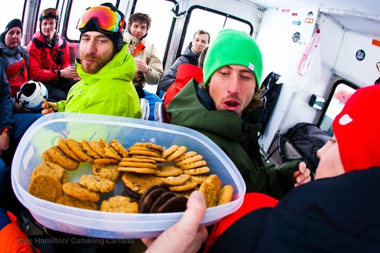 Big Red Cats:                   Snack time rules.... get on the cookies quick.  Photo: Kyle Hamilton