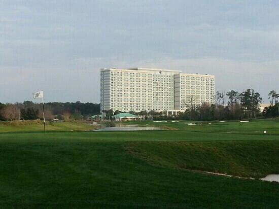 فالدروف أستوريا أورلاندو:                   Golf Course                 