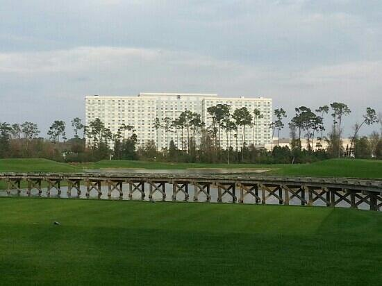 Hilton Orlando Bonnet Creek:                   Hilton from the golf course