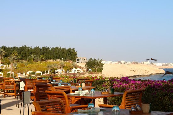 Four Seasons Resort Sharm El Sheikh:                   Sunny