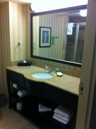 هامبتون إن آند سويتس ألباني داونتاون: A picture of the bathroom