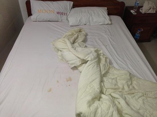 I Win Hostel:                   mmmmm bloody sheets.. delicious