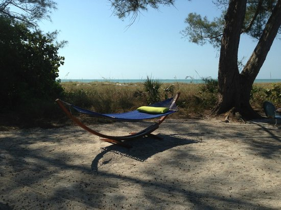 Rolling Waves Cottages:                   view of the hammock and gulf