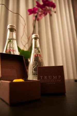 The Adelaide Hotel, Toronto:                   Trump Candy