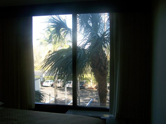 Hyatt Place Tampa Airport/Westshore :                   a roomwith a view