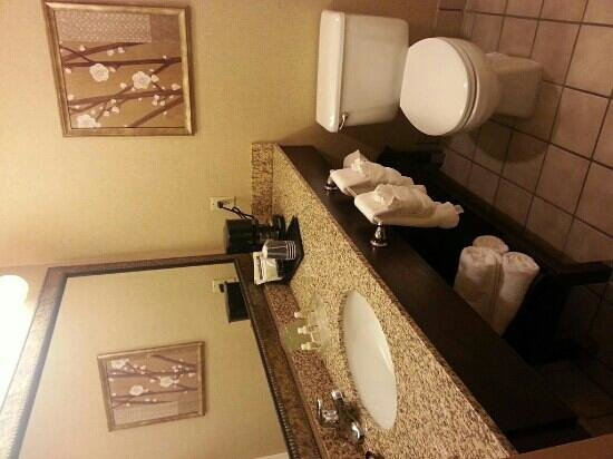 Holiday Inn Hotel & Suites Council Bluffs-I-29: Room 471 Bath