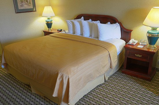 Quality Inn: Room/suite