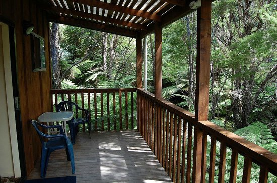 Kanuka Ridge Abel Tasman Backpackers:                   Veranda backyard