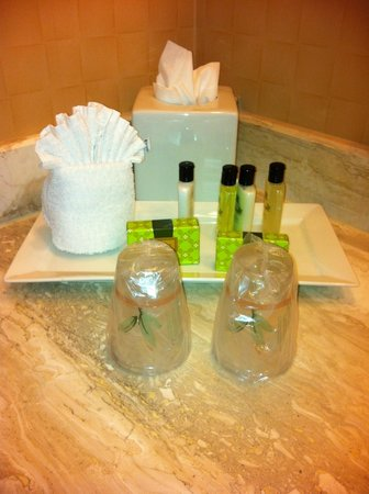 InterContinental Chicago Magnificent Mile: Bathroom amenities