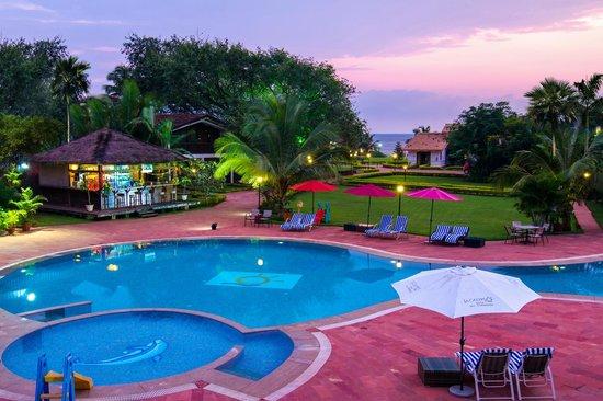La Calypso Goa : Pool View
