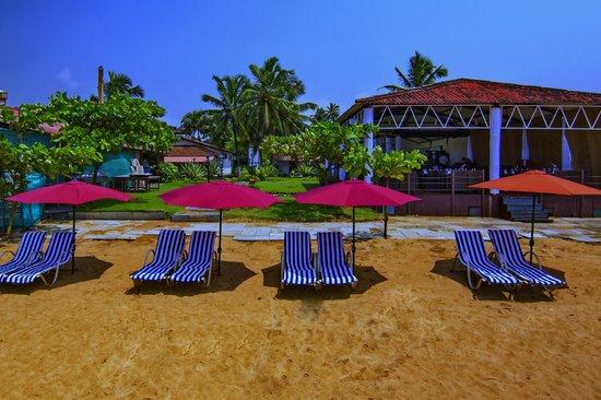 La Calypso Goa Calangute Resort Reviews Photos Rate Comparison Tripadvisor