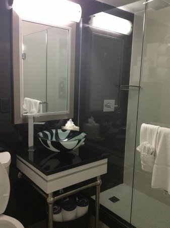 Lotus Boutique Inn & Suites Daytona Beach / Ormond Beach:                   artsy bathroom