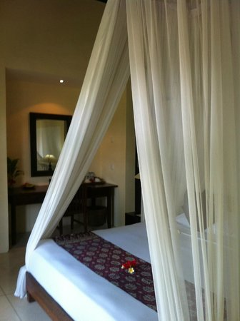 Bhanuswari Resort & Spa:                   The mosquito net isn't just for show!