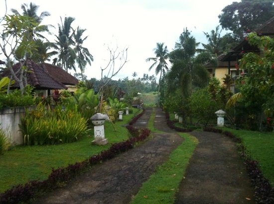 Bhanuswari Resort & Spa:                   Strolling from the room to the pool at 6am