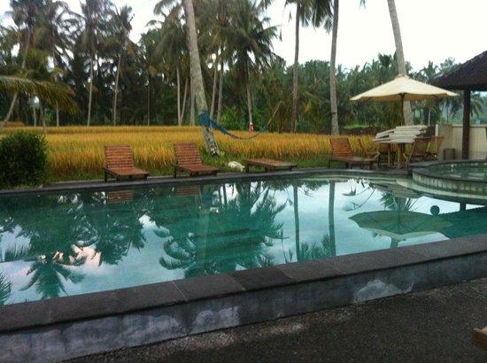 บานุสวารี รีสอร์ท แอนด์ สปา:                   Pool 2 perfect for a 6am swim