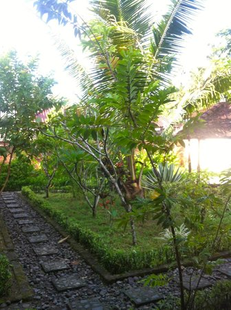 La Casa Home Stay:                                     View of the garden from outside my room