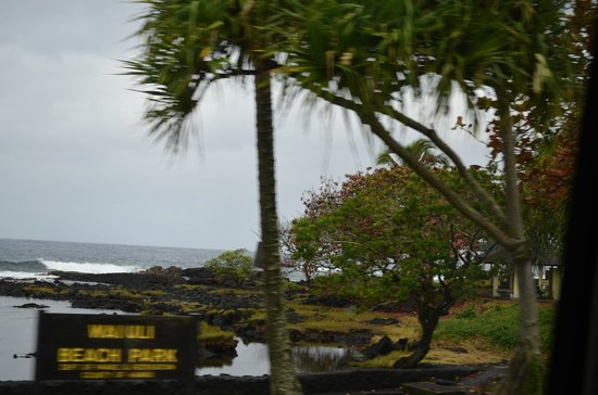 Discover Hawaii Tours: View from the Black sand beach