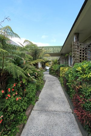 Bay of Islands Country Lodge Motel: Outside Gardens