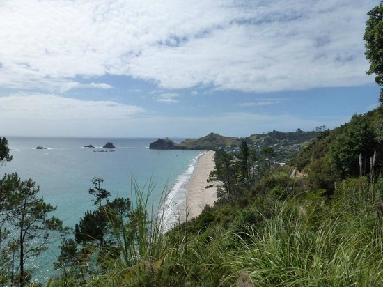 Hawleys B & B Hahei :                   Hahei Beach - from track to Cathedral Cove