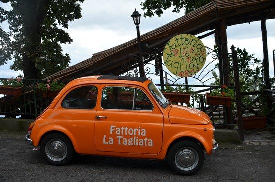 Garbo Limousine Service Tours:                                     Restaurant Fattoria  la Tagliata