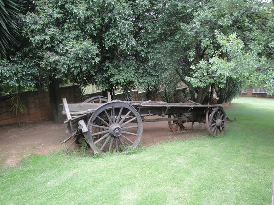 Ikhaya Guest House:                   wagon in the garden