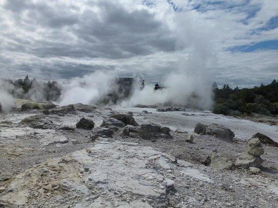 Novotel Rotorua Lakeside: Rotorua - Te Puia - Otherworldly!