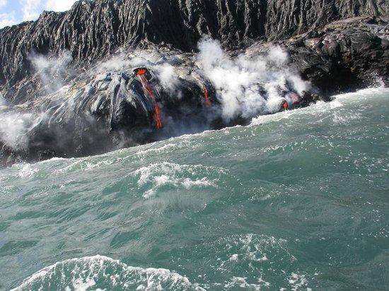 Lava Ocean Tours Inc :                   Awe-Strucked!