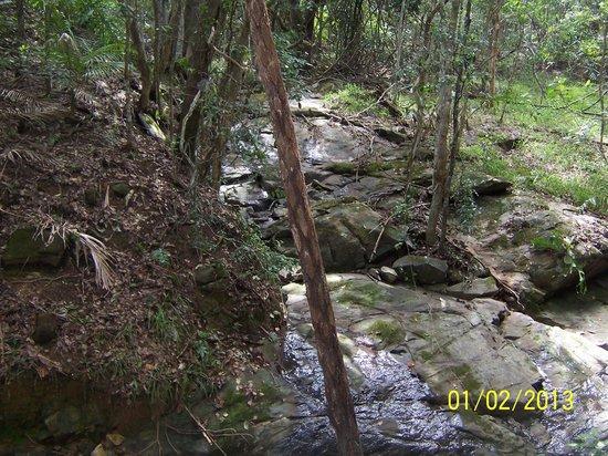 沃寧山絕景沃倫彬棕櫚休閒村照片
