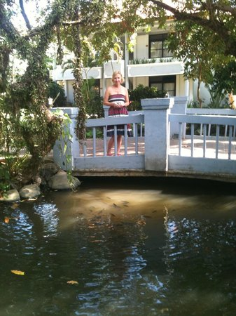 Puri Saron Seminyak:                   Fish pond