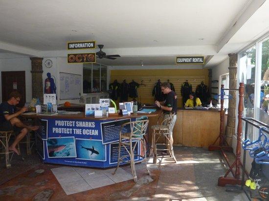 Calypso Diving School:                   Dive shop