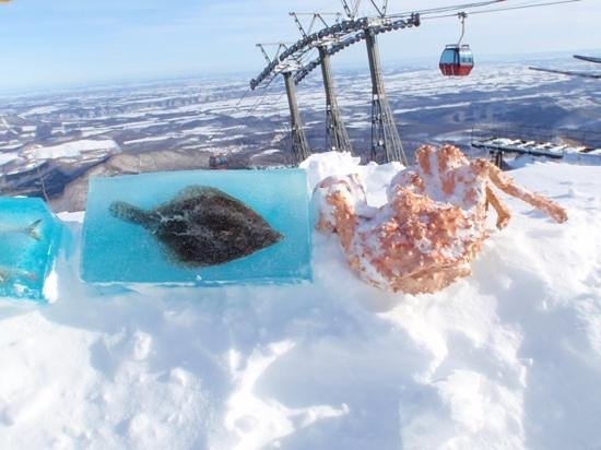 Club Med Sahoro Hokkaido:                   ゴンドラ降りた所                 