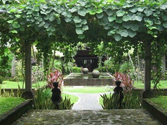 سانور باراديز بلازا هوتل: Garden