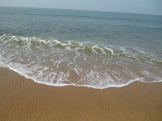 Sai Vishram Beach Resort:                   13