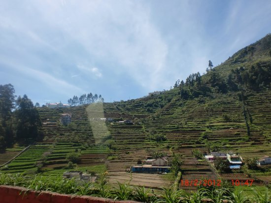 Kodai - By The Valley, A Sterling Holidays Resort: Small Village and Plantation View