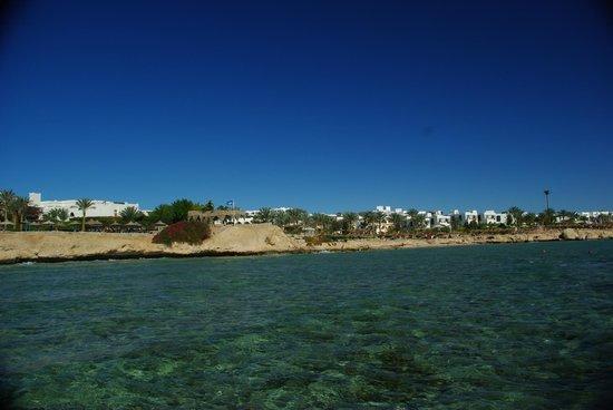 写真Veraclub Queen Sharm枚