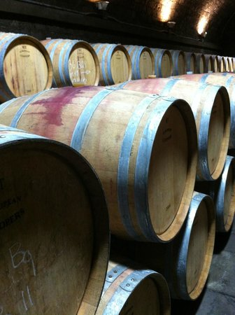 Villa La Massa : in the Cellars of the Antinori Winery