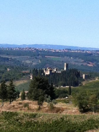 Villa La Massa: Tuscan Hills, En route to Wine-Tasting Lunch