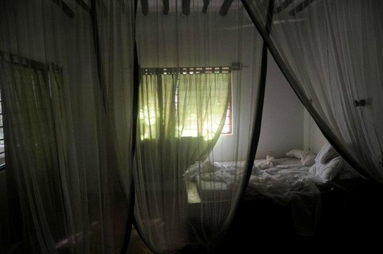 Red Monkey Beach Lodge:                                     bedroom