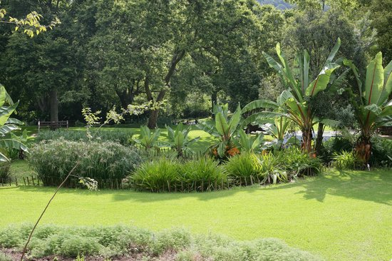 Walter Sisulu National Botanical Gardens: Lush view