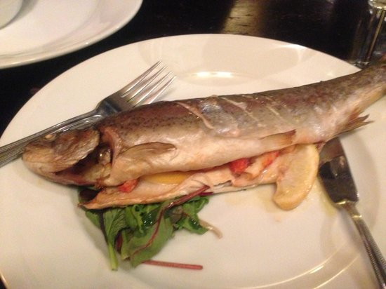 exeter inn:                                     Amazing trout