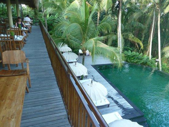 Komaneka at Rasa Sayang:                   Övre restaurangen med vy över poolen