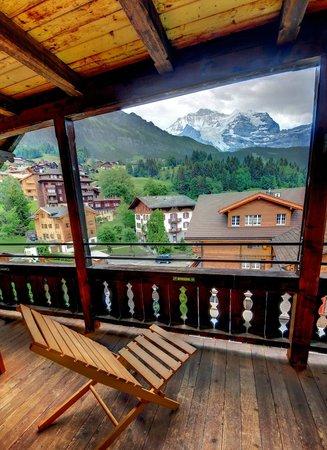 Hotel Edelweiss: Aussicht