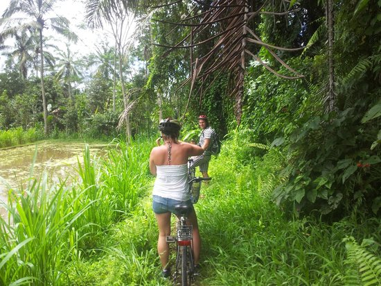 We Are Family Bali Cycling Tours:                   off the beaten track