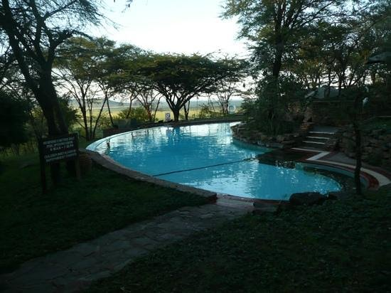 Serengeti Serena Safari Lodge:                   Serengeti serena pool