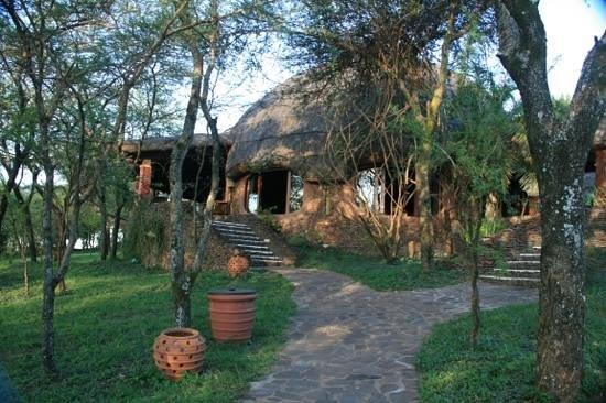 Serengeti Serena Safari Lodge :                   very nice rondel